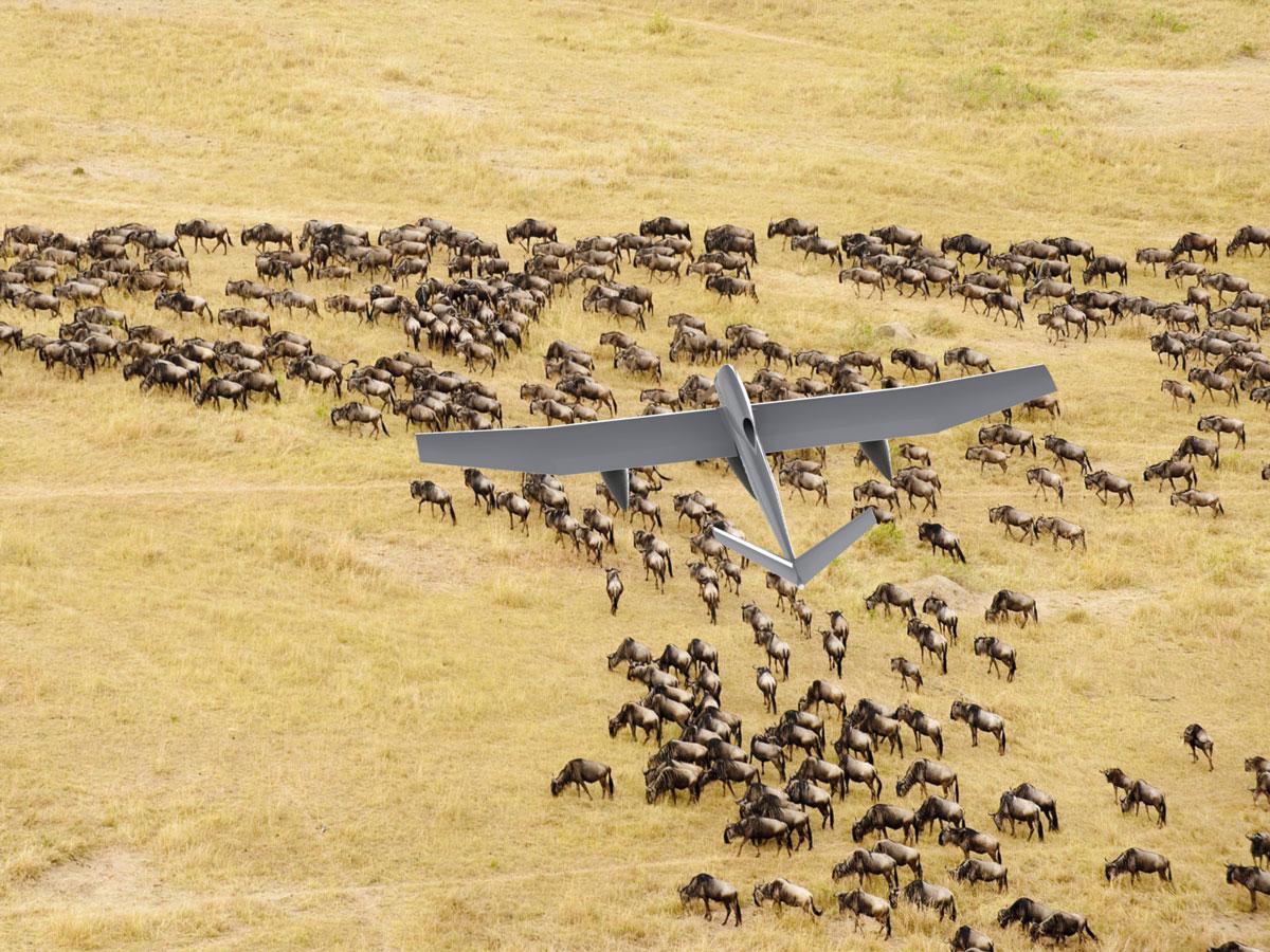 SkyBridge UAS Services | Border Patrol and Wildlife Management